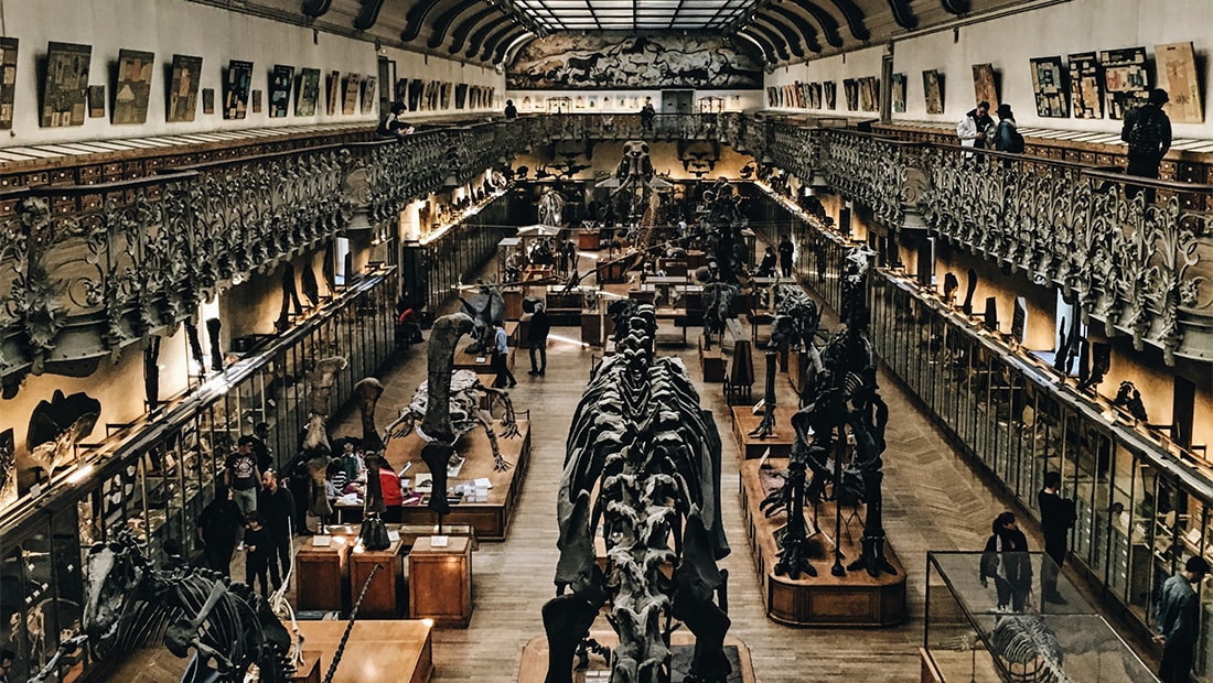 The World's Most Unique Museums